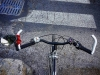 Masticando una gomma al gusto di bicicletta