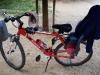 La mia ex Bici rubata