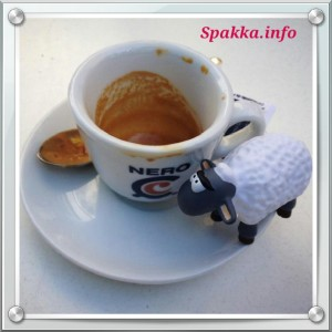 gisismonda spakka.info